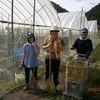 【障がい者就労支援事業所つけち】 トマトハウスの草取り作業